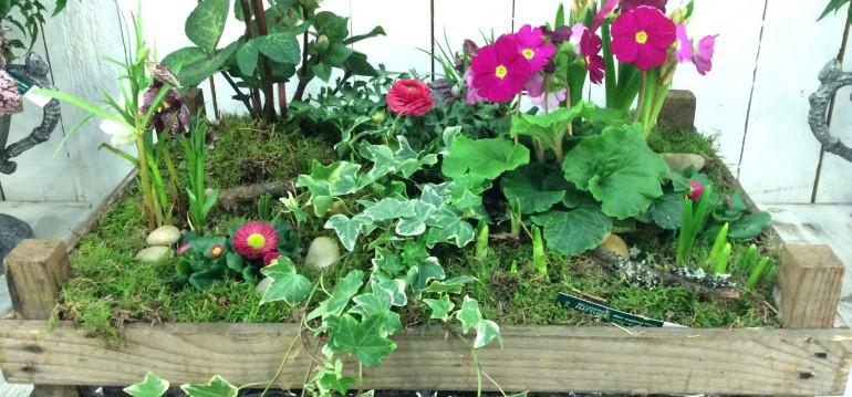 So schön lässt sich eine alte Holzkiste vom Wochenmarkt bepflanzen. Die reinste Freude, oder?