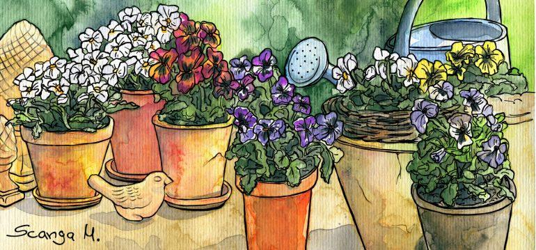 Illustration - Februar - Garten - 2020 - Franks kleiner Garten
