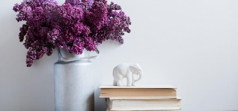 Foto: Daria Minaeva/shutterstock
