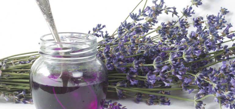 Lavendel - Sirup - Sommer - DIY - Geschenkidee - Franks kleiner Garten