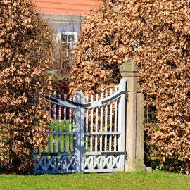Hecke - Sichtschutz - Buche - Gartentor - Gatter - Franks kleiner Garten