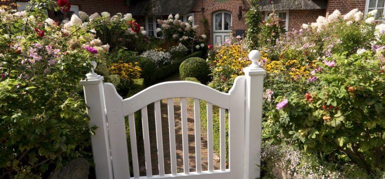 In Franks Kleinem Garten
