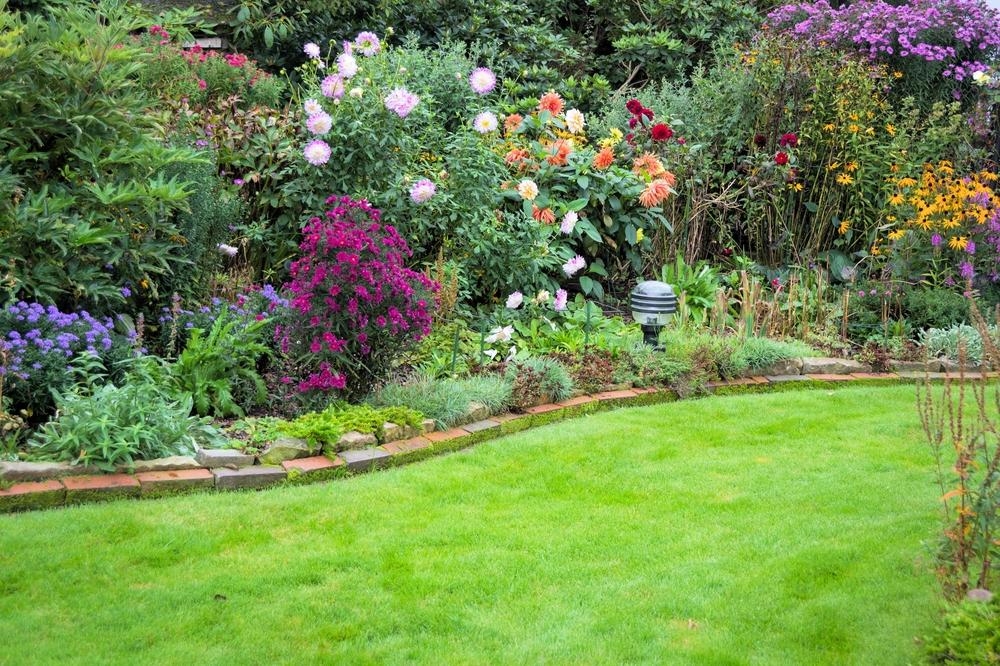 In 6 Schritten Zum Pflegeleichten Garten Willkommen In Franks