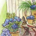 die kleine hortensien schule das solltest du wissen. Black Bedroom Furniture Sets. Home Design Ideas