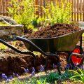 Wasser - Boden - garten - Kompost - Franks kleiner Garten