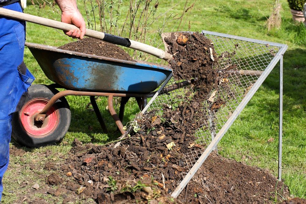 katzenstreu entsorgen kompost