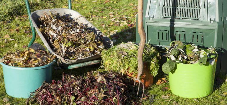 Herbstlaub - Kompost - Herbst - Laub - Oktober - Franks kleiner Garten