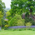 Cottage Garten – Frühling - frankskleinergarten