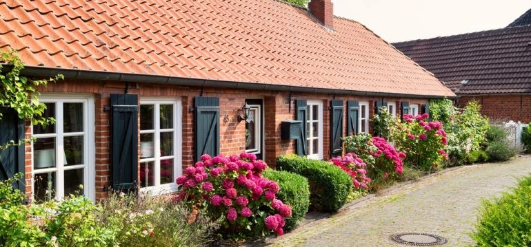 Ostfriesland - Vorgarten - frankskleinergarten.de