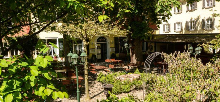 Regensburg - Juni - Franks kleiner Garten