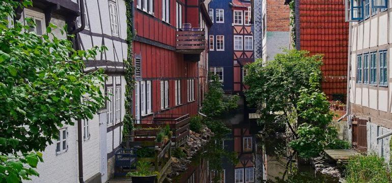 Wolfenbüttel - Juni - Franks kleiner Garten