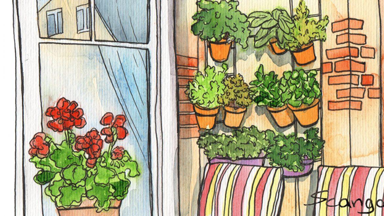 Vertikales Gärtnern - Terrasse - Illustration - Franks kleiner Garten