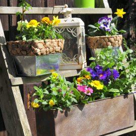 Vertikales Gärtnern - Treppchen - Franks kleiner Garten