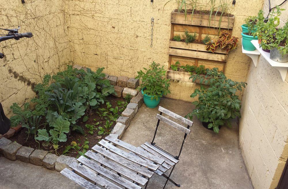 Vertikales Gärtnern - Innenhof - Frank kleiner Garten