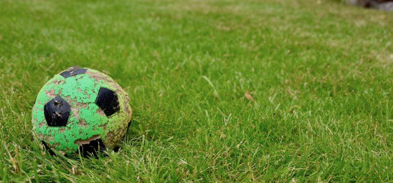Ball-Rasen-Franks kleiner Garten