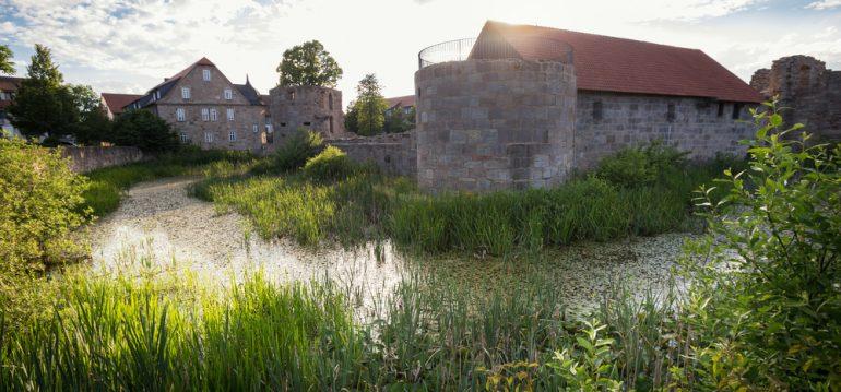 Friedewald - Juli - Franks kleiner Garten