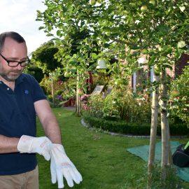 Hecke - Handschuhe - Stihl - Franks kleiner Garten