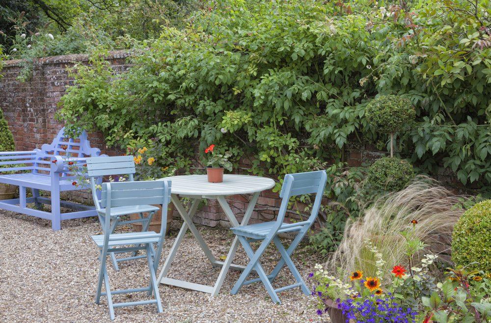 Sichtschutz - Mauer mit Rosen - Franks kleiner Garten - Willkommen ...