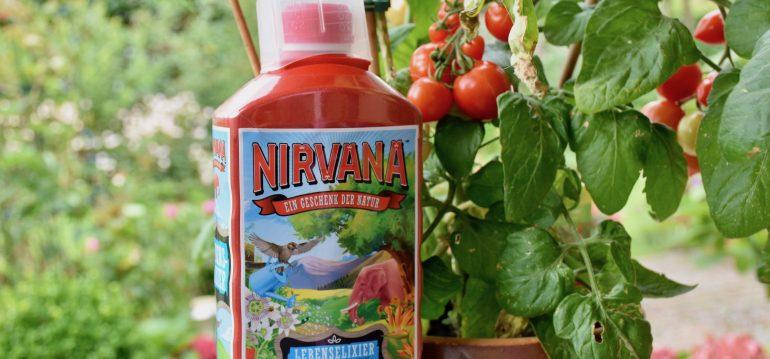 Tomaten - Bester Dünger - Franks kleiner Garten