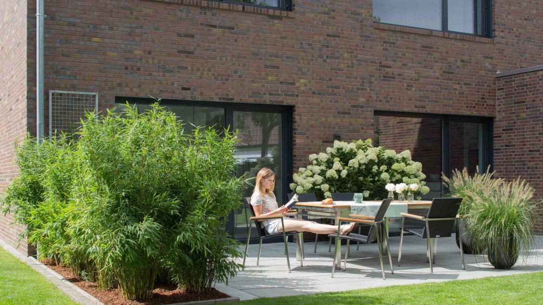 Sichtschutz Terrasse Nachher Franks Kleiner Garten