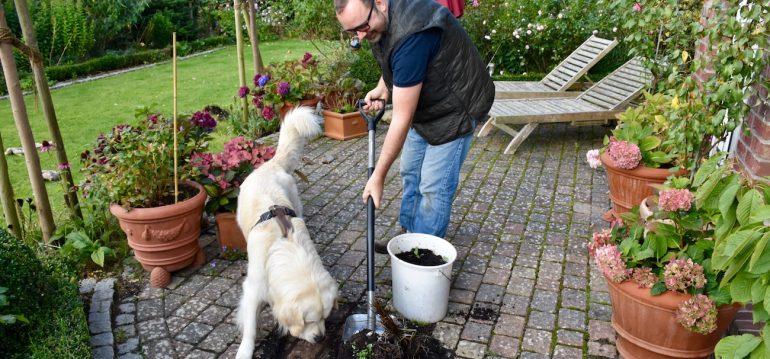Fiskars - Schaufel - Frank und Bruno - Franks kleiner Garten
