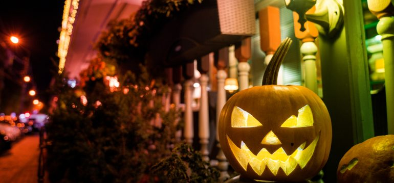 Kürbis - Halloween - Franks kleiner Garten