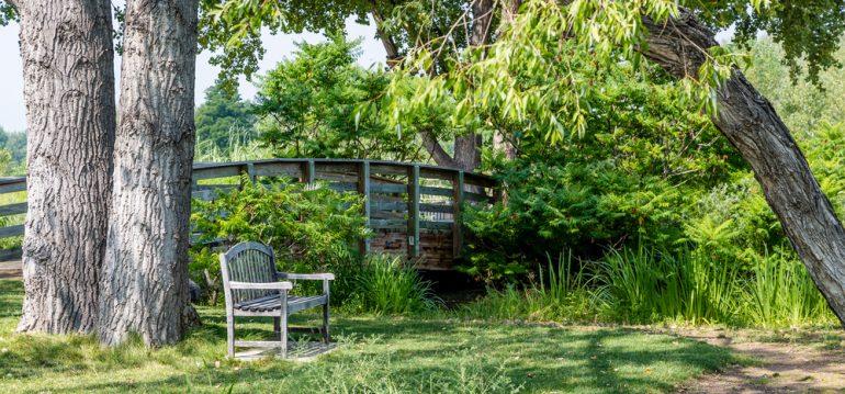 Oktober – Park – Franks kleiner Garten