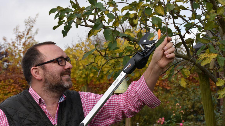 Baumschnitt - Fiskars - Apfelbaum - Franks kleiner Garten