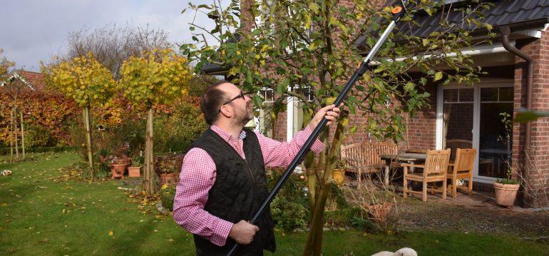 Baumschnitt - Fiskars - mein Apfelbaum - Franks kleiner Garten