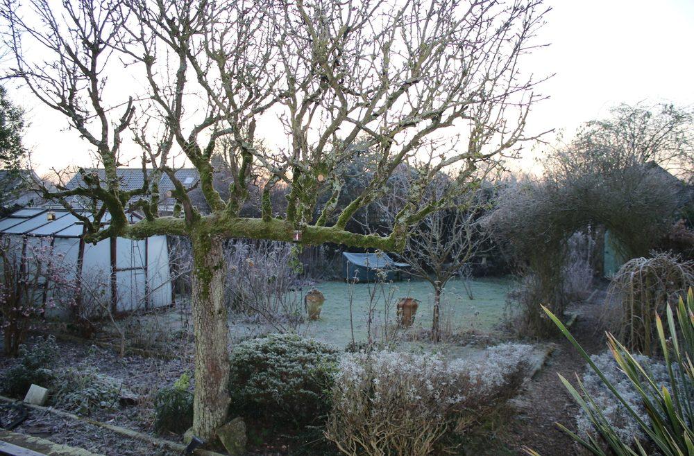 Garten Im Winter Gewachshaus Franks Kleiner Garten Willkommen
