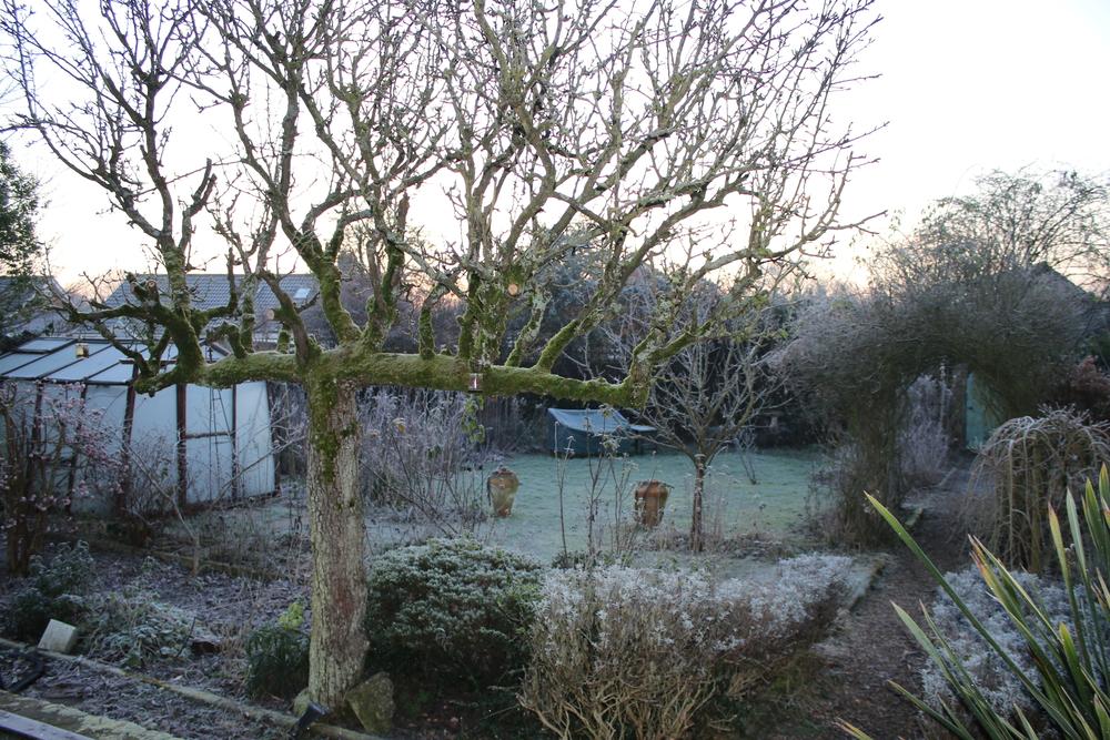 So Sieht Auch Dein Garten Im Winter Toll Aus 5 Tipps Mit Wow