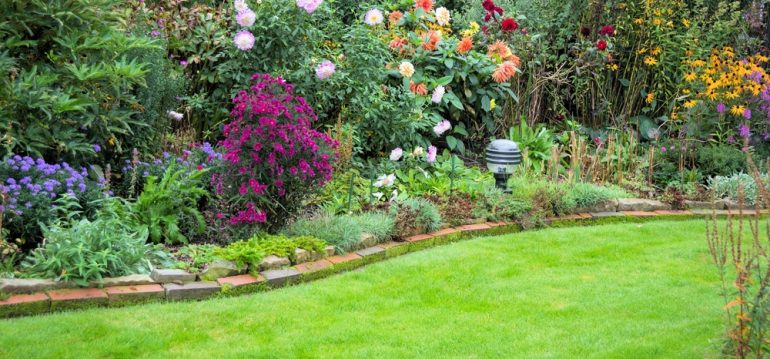 November - Rasen - Franks kleiner Garten