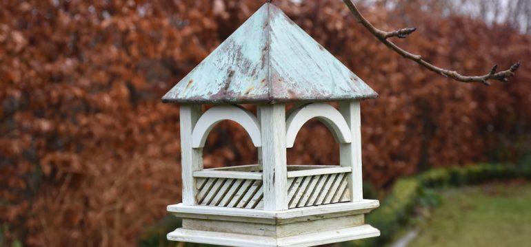 Futterglocke - Vogelhäuschen - Franks kleiner Garten