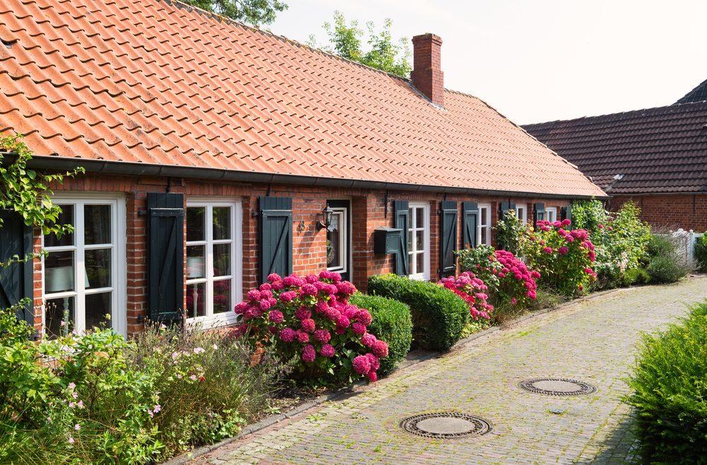 Franks Kleiner Garten