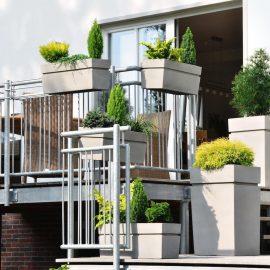 Dachterrasse – Botanico – Franks kleiner Garten