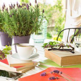 Lavendel - Tisch - Franks kleiner Garten