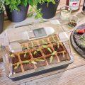 Produkttest - Romberg - Mini-Gewächshaus - Franks kleiner Garten