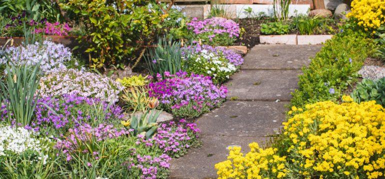 Der richtige Dünger - Schrebergarten - Franks kleiner Garten