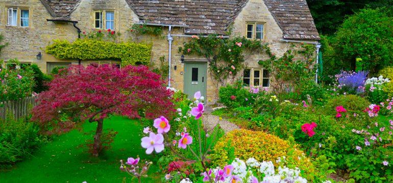 Moos - Rasen - Cottage Garden -Franks kleiner Garten