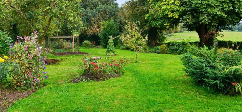 Dein Rasen Im Sommer So Bleibt Er Saftig Grün Willkommen In