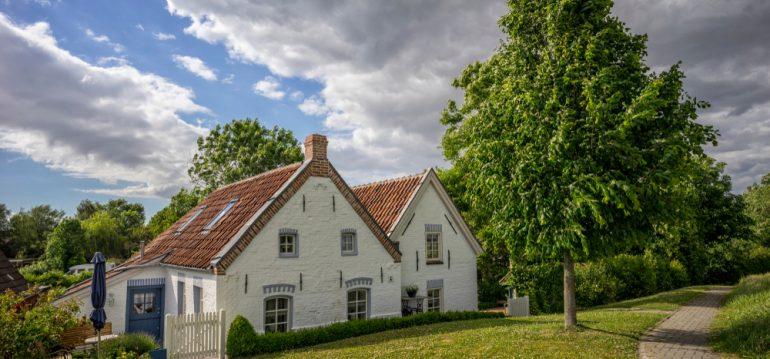 Juni - Termine - Ostfriesland - Haus - Franks kleiner Garten