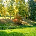 Juni - Termine - Schlangenbad - Park - Franks kleiner Garten