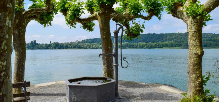 Juli - Inel Mainau - Bodensee – Brunnen - Franks kleiner Garten