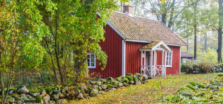 Herbstputz – Laub - Gartenhaus - Cottage - Franks kleiner Garden