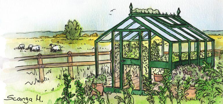 Gewächshaus - Hoklartherm - Biotop I - Marco Scanga - Franks kleiner Garten