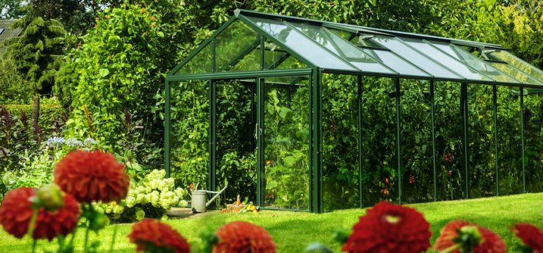 Gewächshaus - Hoklartherm - bio-varis - Sommer - Franks kleiner Garten