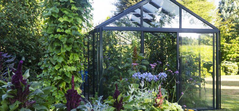 Gewächshaus - Hoklartherm - bio varis - frranks kleiner Garten