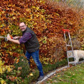 Ultralight Heckenschere FHS 1545 von IKRA - Hecke - Bruno - Franks kleiner Garten