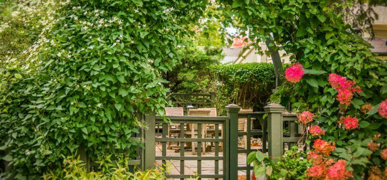 Nachhaltig Gärtnern - Gartenpforte - Franks kleiner Garten