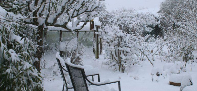 Gewächshaus - Winter - Schnee - Hoklartherm - Franks kleiner Garten